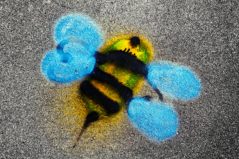 buzz off / 3x2 + graffiti