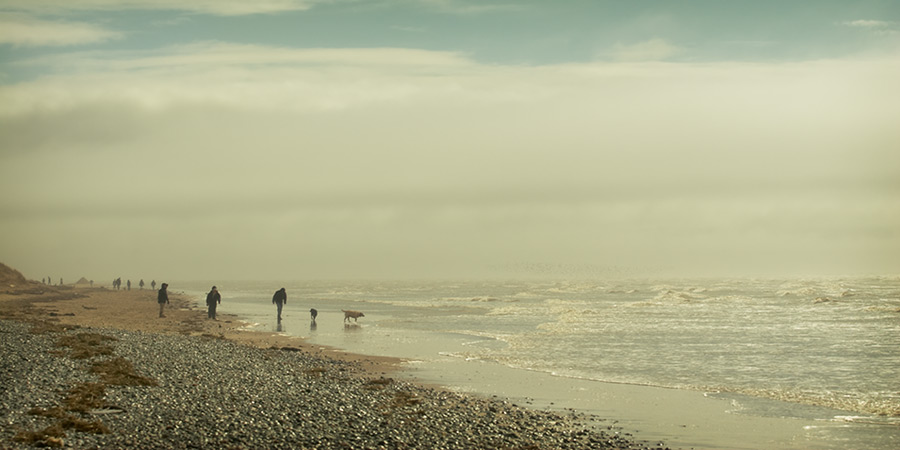 coming back / 2x1 + fylde coast [scenic] + people