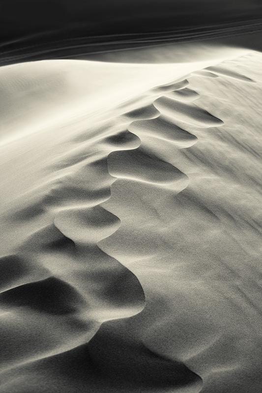 desert tracks #3