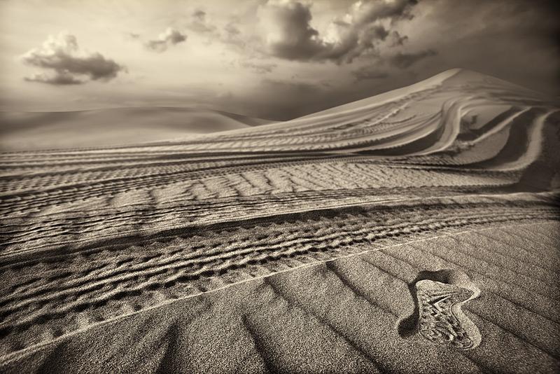 desert tracks #5