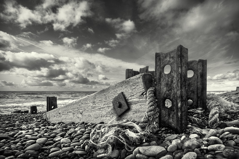 in defence of the sea