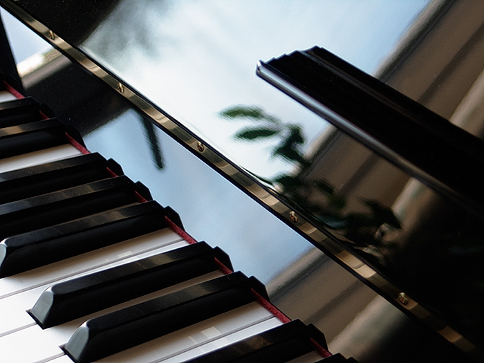 piano and leaves