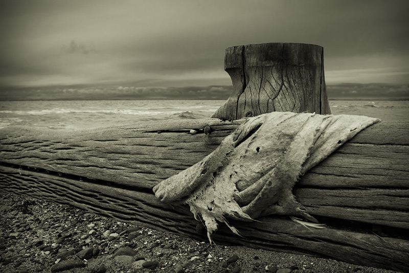 untitled #0031 / 3x2 + fylde coast [scenic] + beachcombing