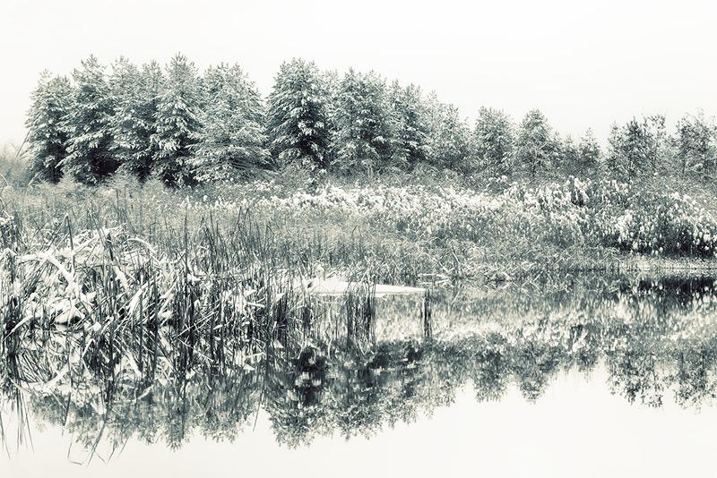 winter lake #4